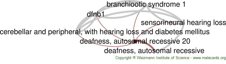 Diseases related to Deafness, Autosomal Recessive 20