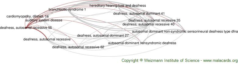 Diseases related to Deafness, Autosomal Recessive 55