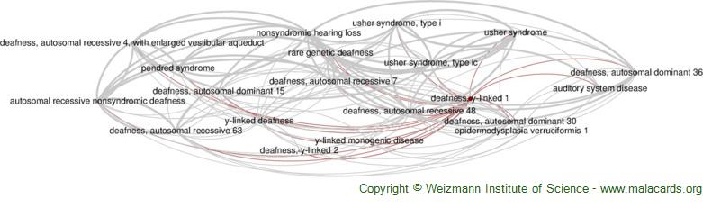 Diseases related to Deafness, Y-Linked 1