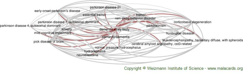 Diseases related to Dementia, Lewy Body
