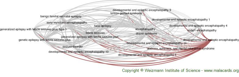 Diseases related to Developmental and Epileptic Encephalopathy
