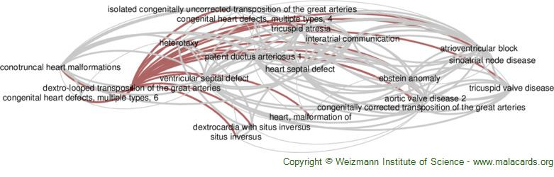 Diseases related to Dextro-Looped Transposition of the Great Arteries
