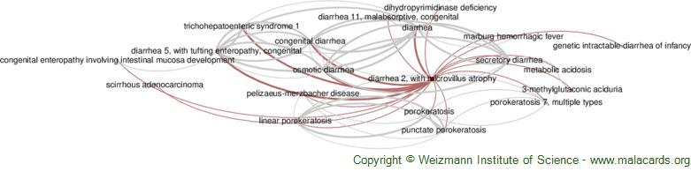 Diseases related to Diarrhea 2, with Microvillus Atrophy