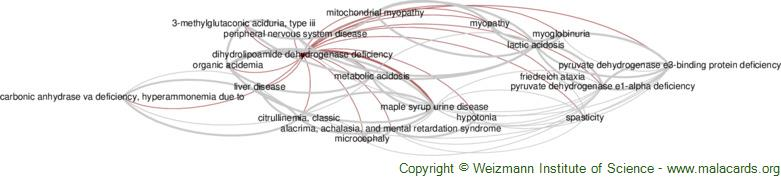 Diseases related to Dihydrolipoamide Dehydrogenase Deficiency