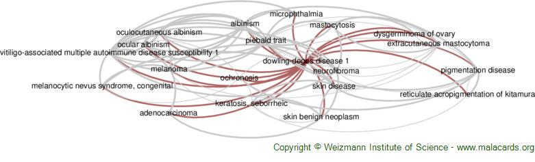 Diseases related to Dowling-Degos Disease 1