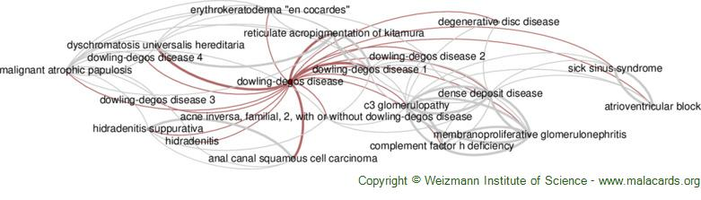Diseases related to Dowling-Degos Disease
