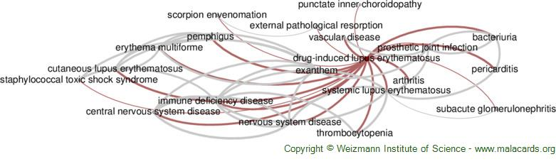 Diseases related to Drug-Induced Lupus Erythematosus