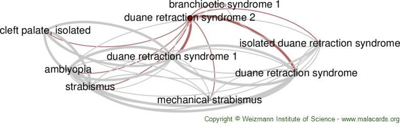 Diseases related to Duane Retraction Syndrome 2