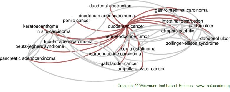 Diseases related to Duodenum Cancer