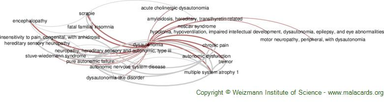 Diseases related to Dysautonomia