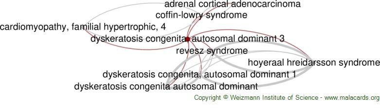 Diseases related to Dyskeratosis Congenita, Autosomal Dominant 3