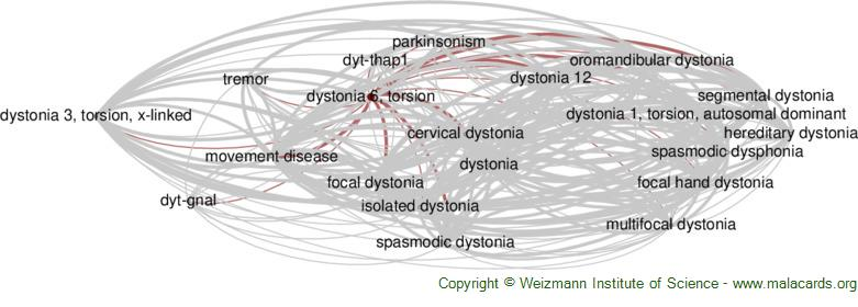 Diseases related to Dystonia 6, Torsion
