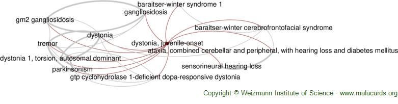 Diseases related to Dystonia, Juvenile-Onset