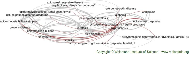 Diseases related to Ectodermal Dysplasia/skin Fragility Syndrome