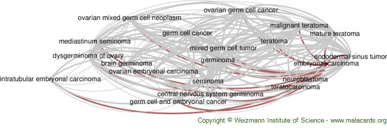 Diseases related to Embryonal Carcinoma