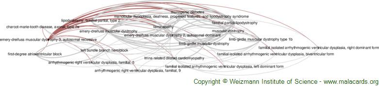 Diseases related to Emery-Dreifuss Muscular Dystrophy 3, Autosomal Recessive