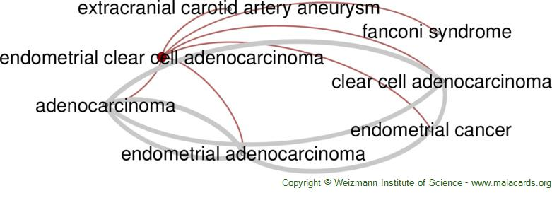 Diseases related to Endometrial Clear Cell Adenocarcinoma