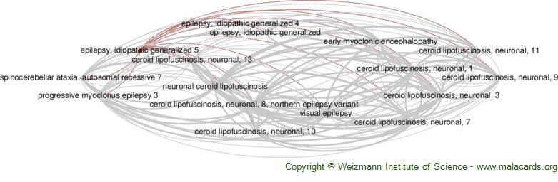 Diseases related to Epilepsy, Idiopathic Generalized 5