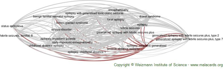 Diseases related to Epilepsy, Idiopathic Generalized