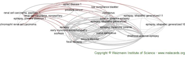 Diseases related to Epilepsy, Juvenile Absence 1