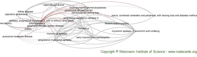Diseases related to Epilepsy, Progressive Myoclonic, 4, with or Without Renal Failure