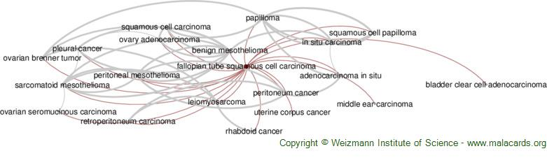 Diseases related to Fallopian Tube Squamous Cell Carcinoma