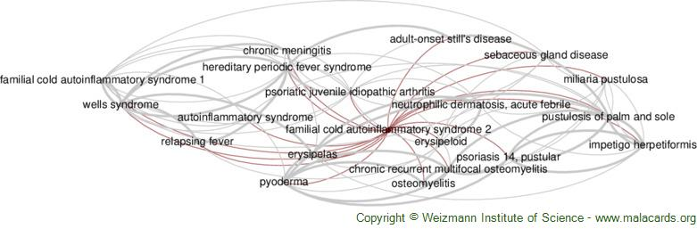 Diseases related to Familial Cold Autoinflammatory Syndrome 2