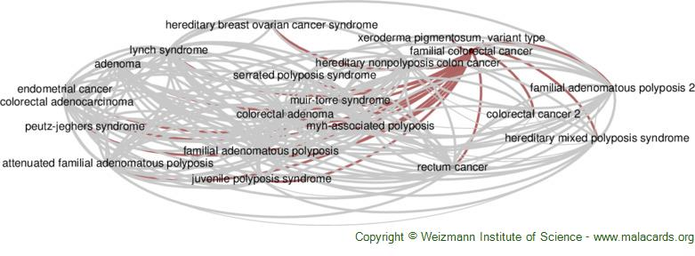 Diseases related to Familial Colorectal Cancer