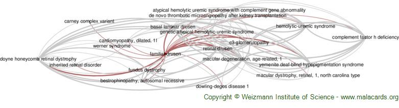 Diseases related to Familial Drusen