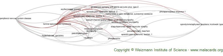 Diseases related to Familial Episodic Pain Syndrome