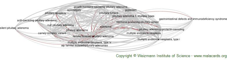 Diseases related to Familial Isolated Pituitary Adenoma