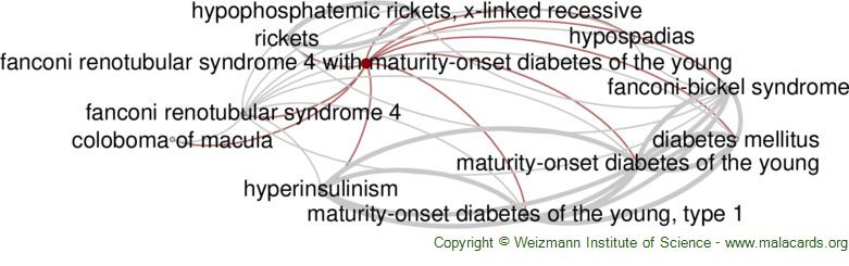 Diseases related to Fanconi Renotubular Syndrome 4 with Maturity-Onset Diabetes of the Young