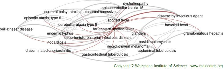 Diseases related to Far Eastern Spotted Fever