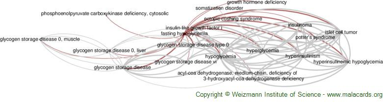 Diseases related to Fasting Hypoglycemia
