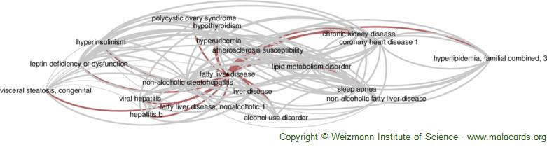 Diseases related to Fatty Liver Disease