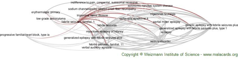 Diseases related to Febrile Seizures, Familial, 1