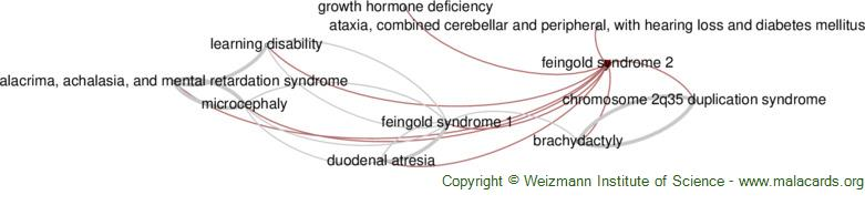Diseases related to Feingold Syndrome 2