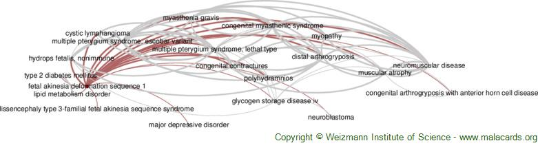 Diseases related to Fetal Akinesia Deformation Sequence 1