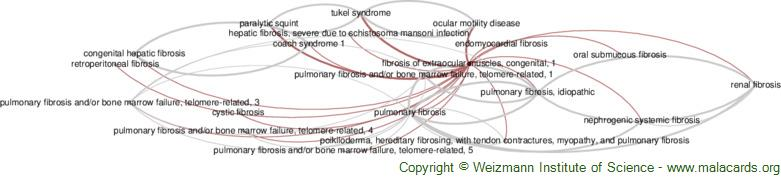 Diseases related to Fibrosis of Extraocular Muscles, Congenital, 1
