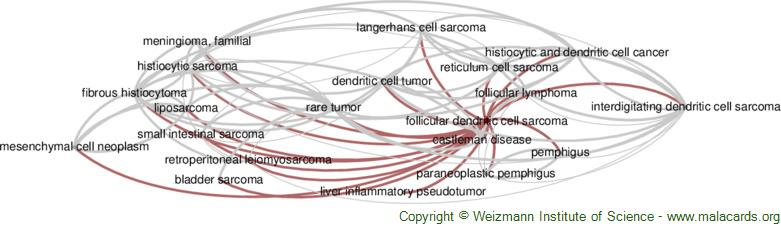 Diseases related to Follicular Dendritic Cell Sarcoma