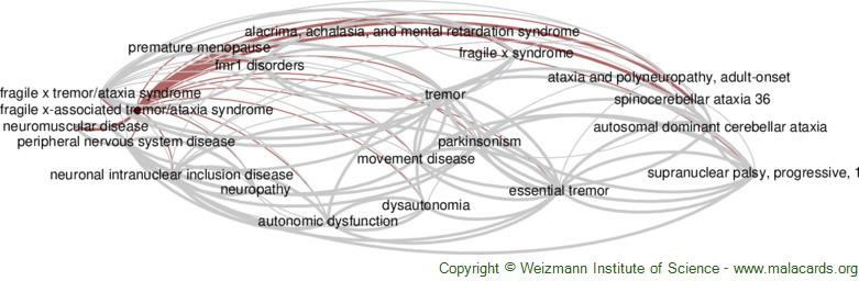 Diseases related to Fragile X-Associated Tremor/ataxia Syndrome