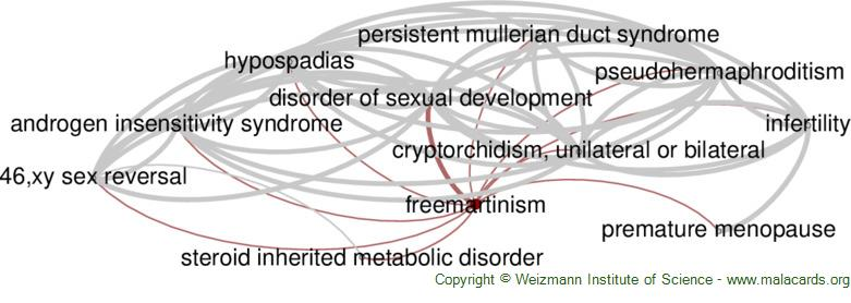 Diseases related to Freemartinism