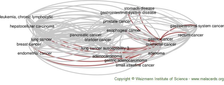 Diseases related to Gastric Cancer