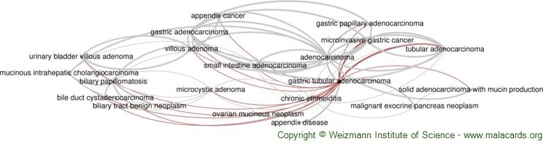 Diseases related to Gastric Tubular Adenocarcinoma