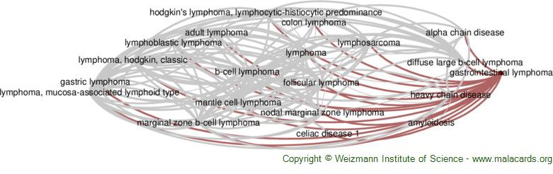 Diseases related to Gastrointestinal Lymphoma