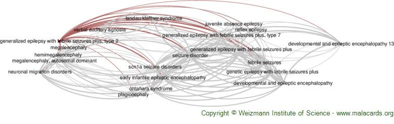 Diseases related to Generalized Epilepsy with Febrile Seizures Plus, Type 2
