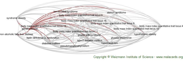 Diseases related to Genetic Obesity