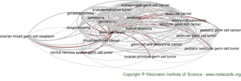 Diseases related to Germ Cell Cancer