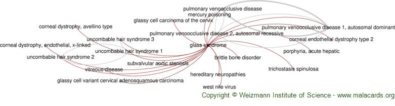 Diseases related to Glass Syndrome