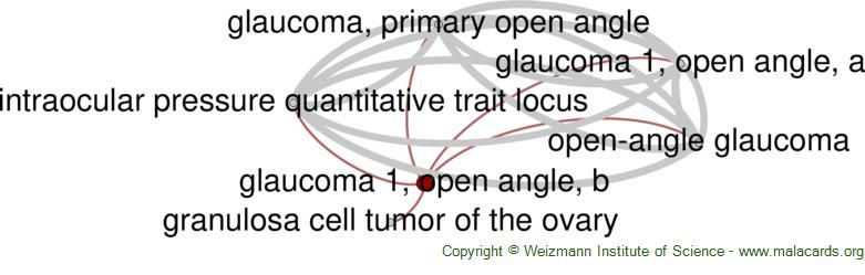 Diseases related to Glaucoma 1, Open Angle, B